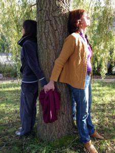 lux arbre